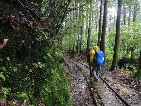 ザックカバーを付けた荷物を持って登山する人