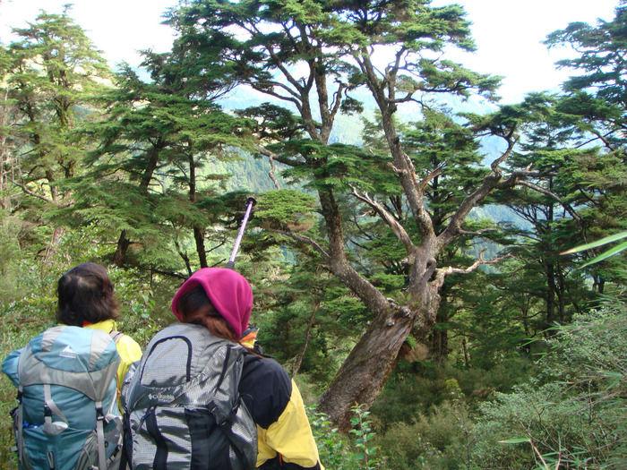 登山中の景色を楽しむ人