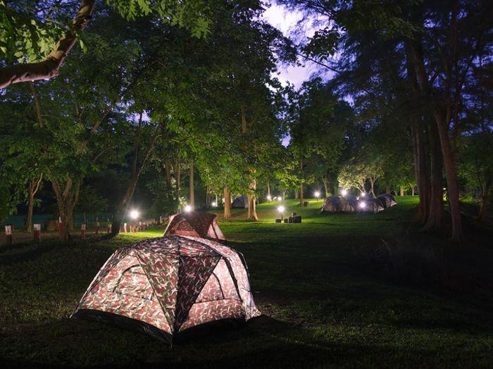 夜の林間キャンプで光るテント