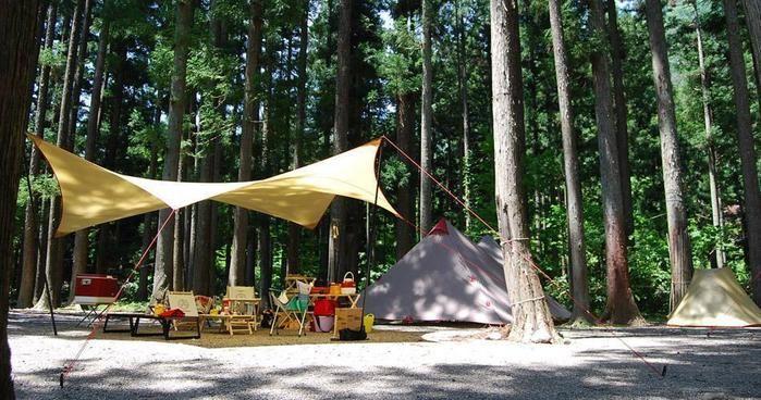 木々に囲まれたキャンプスタイル