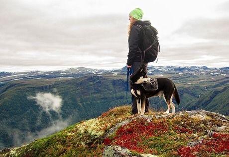 丘の上で犬と立っている女性