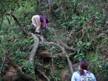 厳しい山道をロープを使って登る女性2人組
