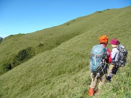 足元が覆われる高さの草が生えた山を登る女性二人組