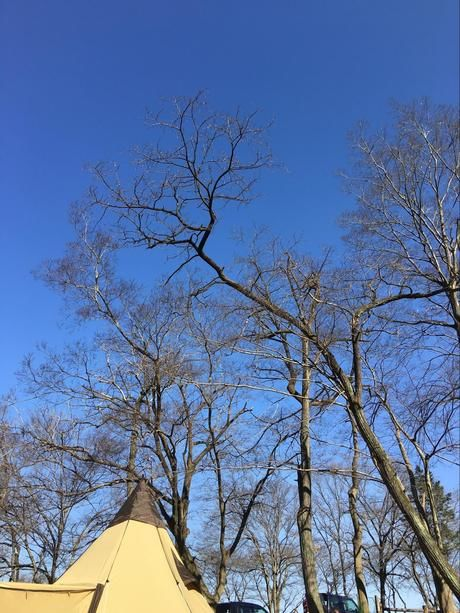 冬のキャンプ場のテント