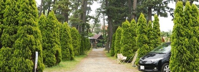 神奈川・小田原のなみのこ村キャンプ場