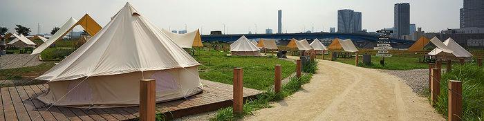 ワイルドマジックのテントが並ぶサイトの風景