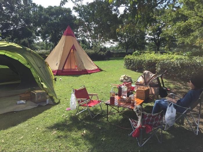 芝生の上に張ったテントと机とチェア