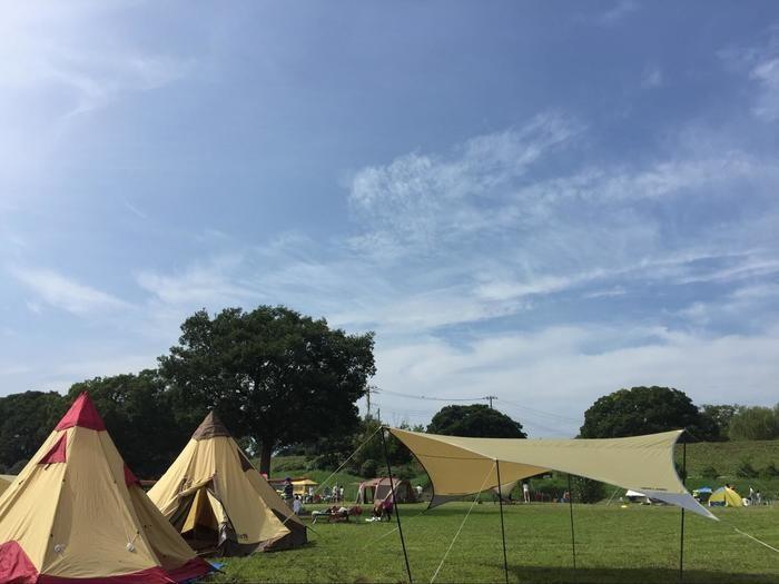 芝生に張られたテントやタープと青空