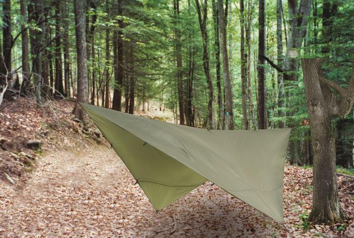 林に張られたカーキのタープ