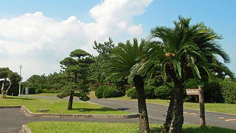 日川浜オートキャンプ場