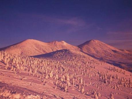 雪が積もった八甲田山