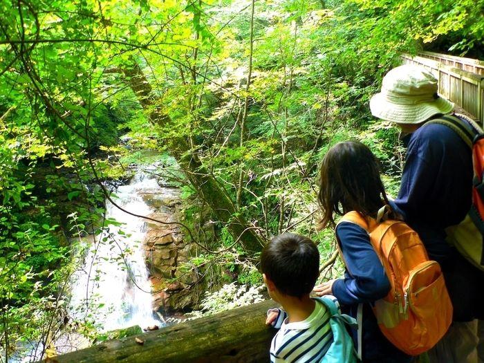 滝を見る家族