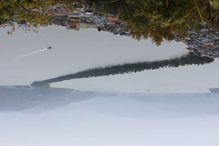 傘松公園展望台からの景色