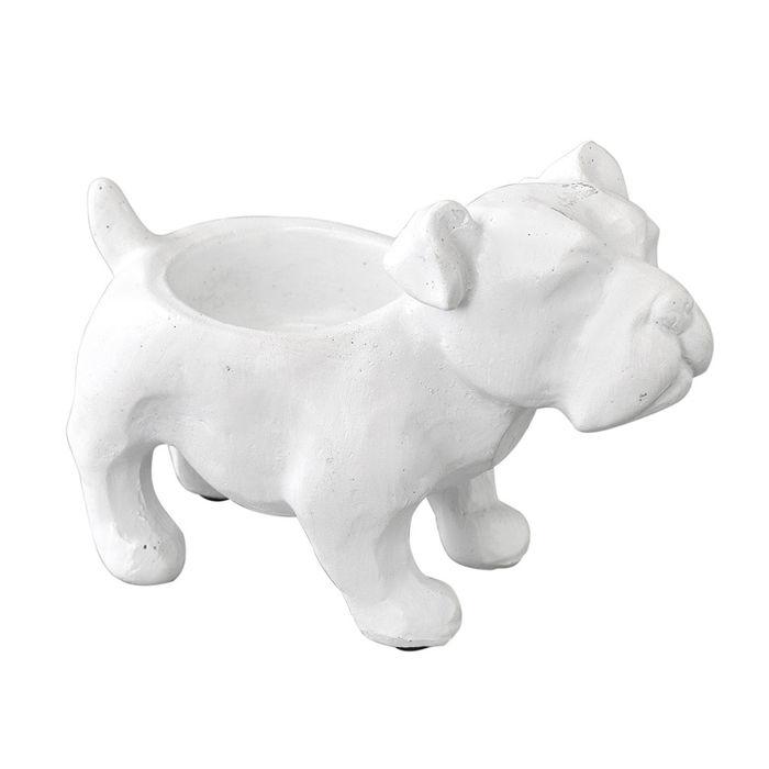 スパイスのANIAML PETIT POT DOG