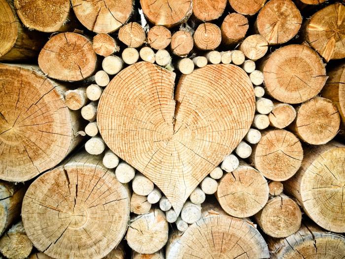 薪の選び方