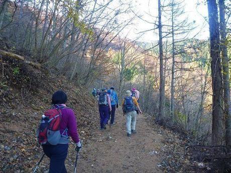 新潟県、平ヶ岳の登山道