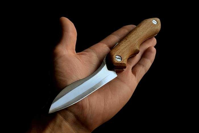 掌に載せた折り畳みナイフ