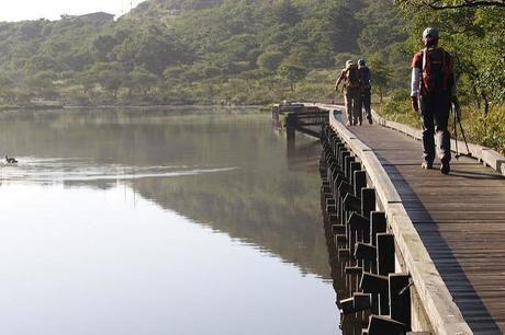 湖のほとりを散歩する人