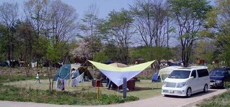エコキャンプみちのくの設営後のオートキャンプサイト