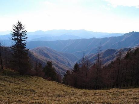 雲取山から見える景色