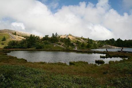 草津白根山の鏡池