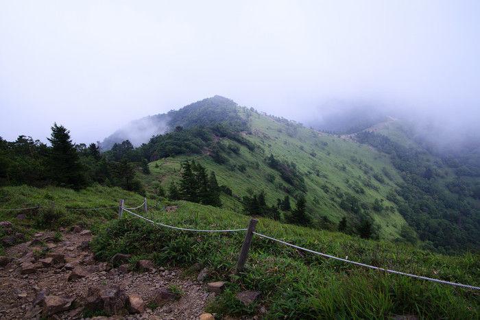 大菩薩嶺の山道