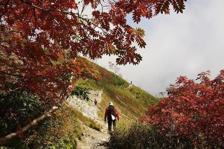 紅葉した巻機山の登山道を歩く人