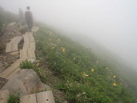霧に包まれた巻機山の登山道