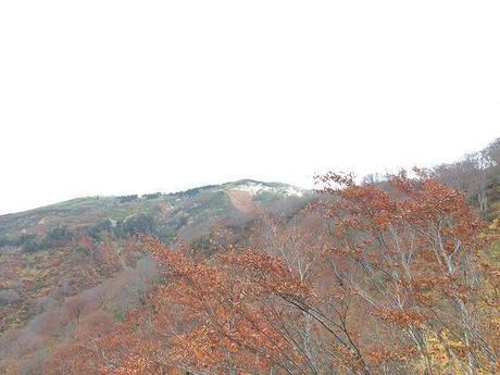巻機山の登山道、井戸尾根コース