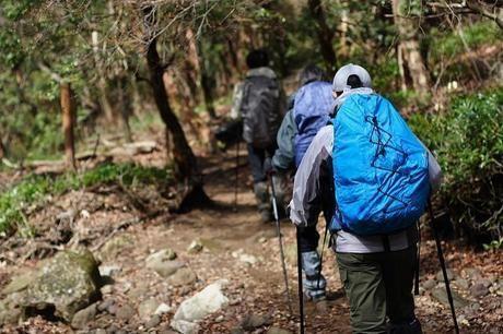 天城山の万二郎岳と万三郎岳周遊ルートを歩く人