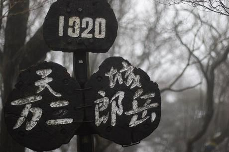 天城山の山道に立つ万二郎岳と万三郎岳の看板