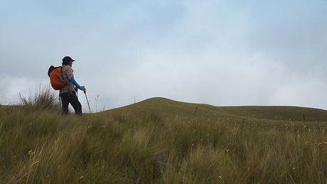 トレキングパンツを履いて山登りをする女性
