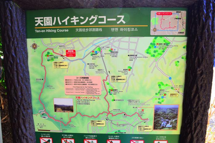 天園ハイキングコースのマップ
