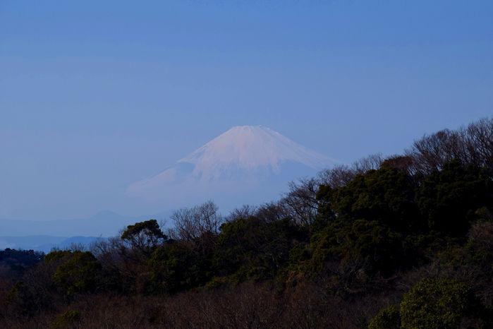 半僧坊の展望台から見える富士山