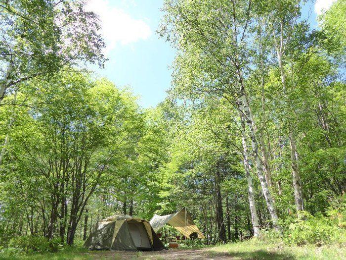 無印良品南乗鞍キャンプ場のテントサイト