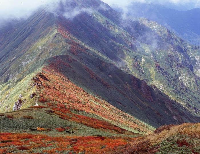 紅葉が美しい鳳凰三山
