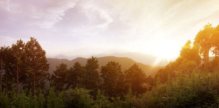 高尾山の外観