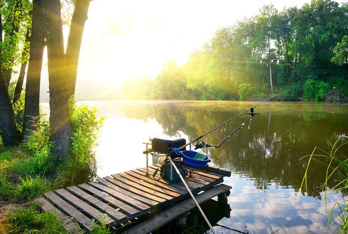 釣り堀の釣り場に置いてある釣りの道具