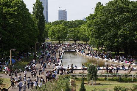 代々木公園の池と人々