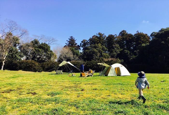 芝生の上でキャンプを楽しむ家族