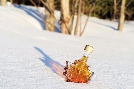 雪に埋もれたメープルシロップの瓶