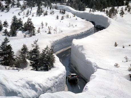 上から見た雪の回廊
