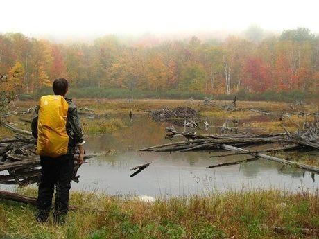 山の湖を眺める男性