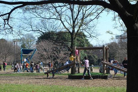 砧公園の遊び場