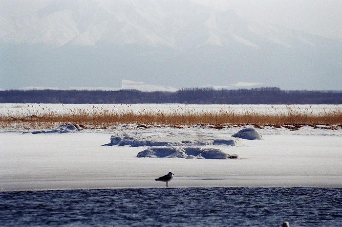 網走湖に雪が積もった風景