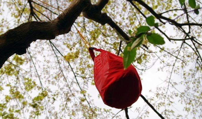 木に吊り下げられたスタッフバッグ