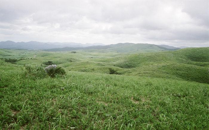 秋吉台の美しい草原