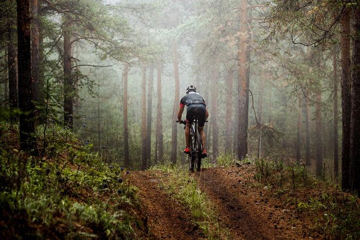 山道でマウンテンバイクに乗る男性の後ろ姿