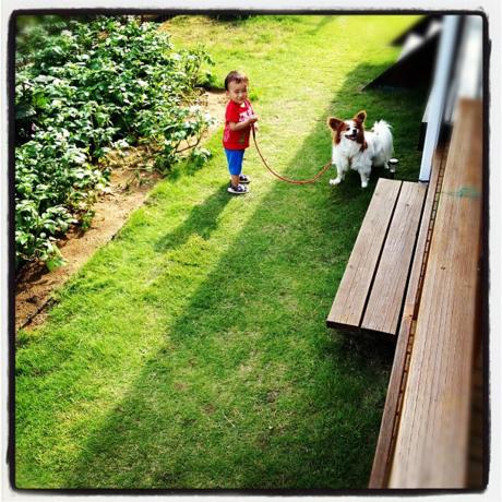庭で犬と遊ぶ子供