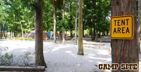 キャンプ・アンド・キャビンズ那須高原のサイトの様子